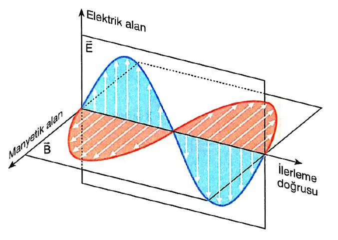 Elektromanyetik Dalga Nedir